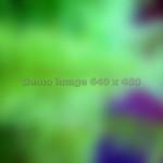 dsc20050315_145007_132